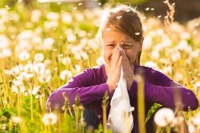 Alergia – światowa pandemia