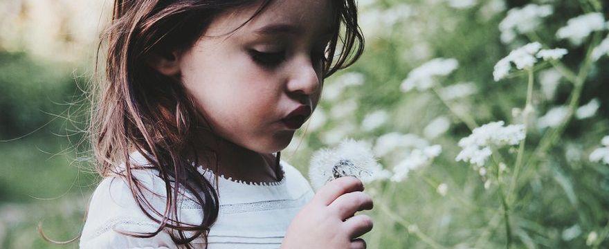 Alergia na pyłki: OBJAWY u dzieci!