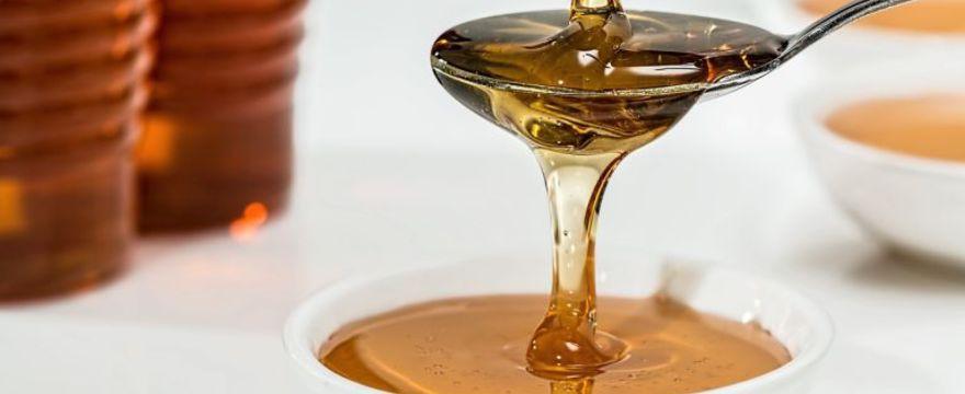 Homeopatia – podstawy leczenia, które warto znać!